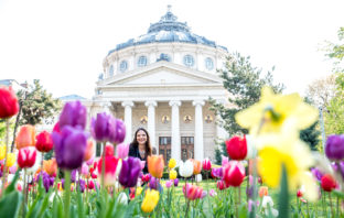 Flower garden at the Romanian Athenaeum (Ateneul Roman)