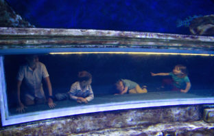 kids playing in the aquarium at a family trip to Jerusalem