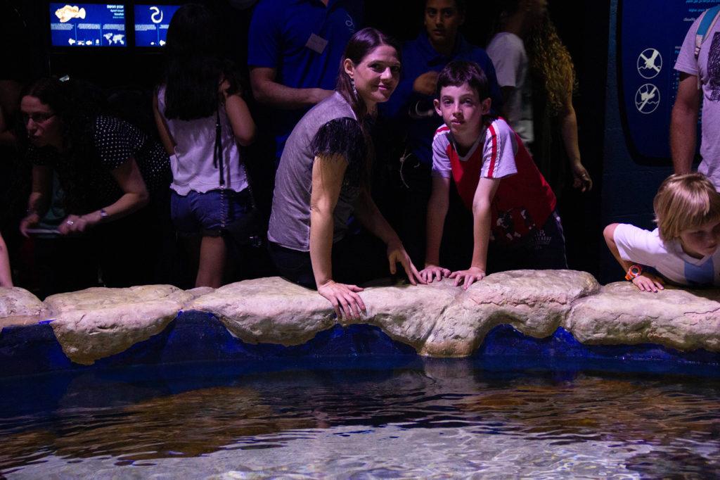 אקווריום ירושלים -אטרקציות לילדים בירושלים | עינבר שחק