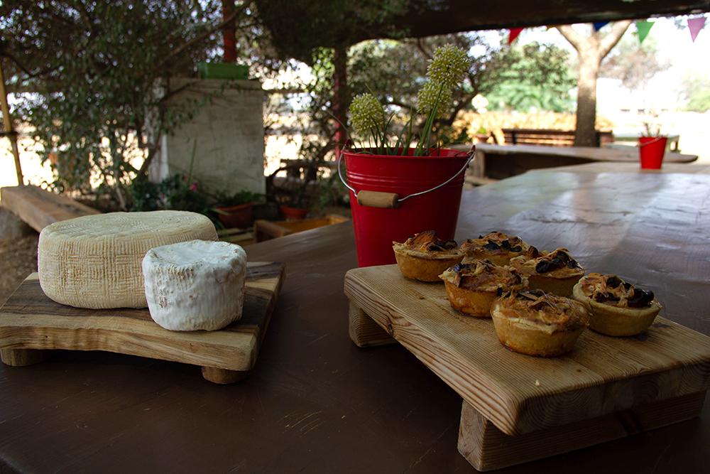 גבינות כבשים מחלבת צאלה | פסטיבל דרום אדום של הקיץ | עינבר שחק